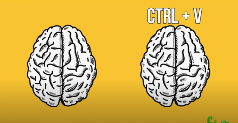 From SciShow: Can AI Evolve?